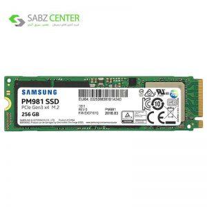 اس اس دی سرور سامسونگ مدل PM981 ظرفیت 256 گیگابایت - 0